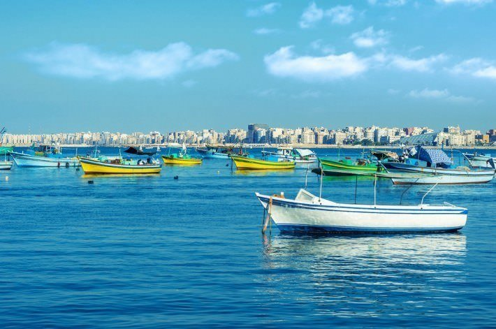Alexandria Egypt  city photos gallery : here: Home › Travel to Egypt › Tours of Egypt › Alexandria Egypt ...