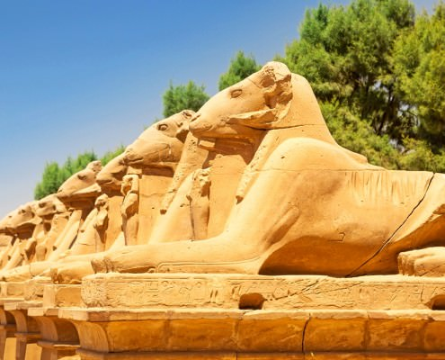 Vacation Packages To Egypt