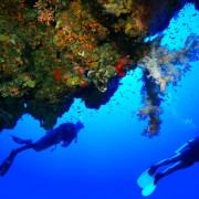 Hurghada Diving Holidays