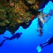 Hurghada Diving Holidays