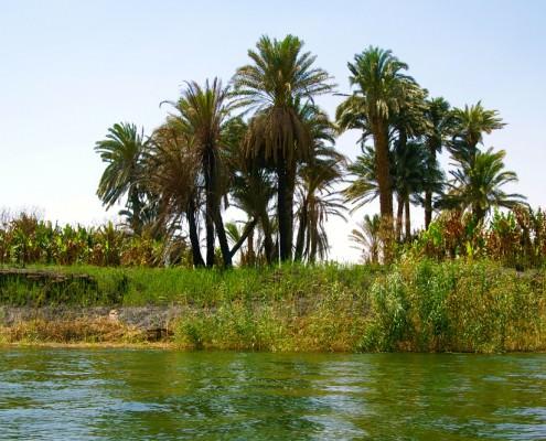15 Day Egypt Tour - Holy Family Trip to Egypt