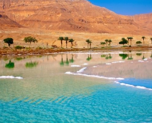 Dead Sea seashore with palm trees and mountains, Jordan