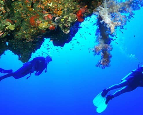 Divers and coral reef, Hurghada, Red Sea