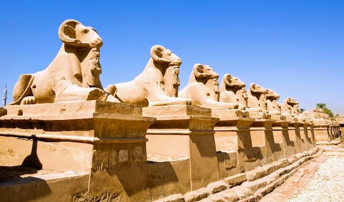 Egypt Cruises 2019 - Avenue of Sphinxes in Luxor