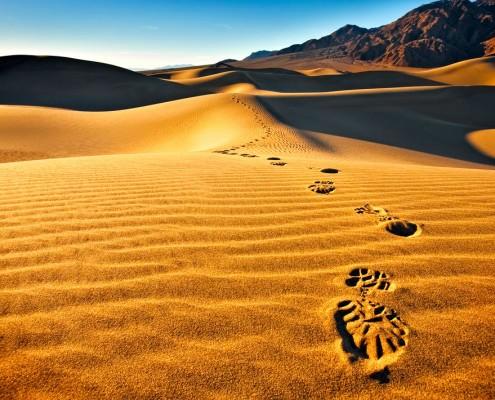 Egypt Desert Trek