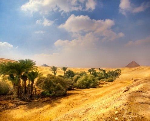 Egypt Oasis Tour
