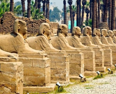 Human headed sphinxes, Luxor Temple
