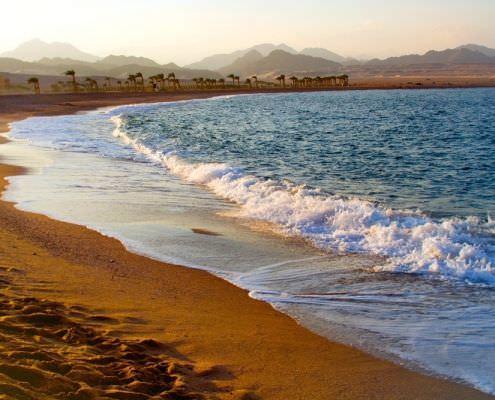 Sharm El Sheikh Tour Package