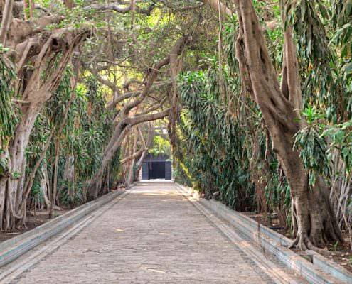 Passage through trees leading to closed door at the public park of The Manial Palace of Prince Mohammed Ali Tewfik, Cairo