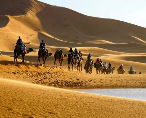 Marrakech Desert Tours - Caravan of tourists on camels riding in the desert