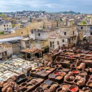 Fez Tours - Tannery in Fez, Morocco