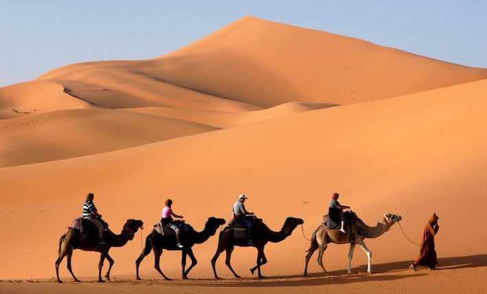 Things to Do in Morocco - Camel Caravan