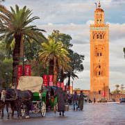 Things to do in Marrakech - Cab drivers in horse-drawn carriages around Koutoubia mosque awaiting tourists