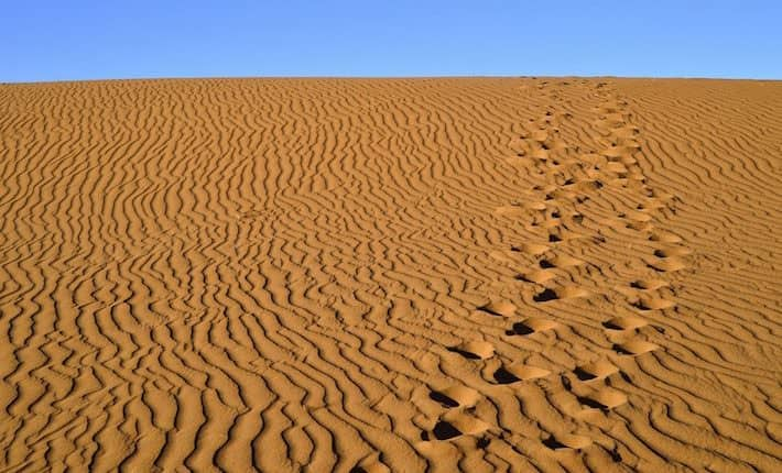 sand Sahara desert in Morocco near Mhamid 2