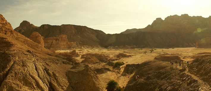 Sinai Desert Treks - Photo by Florian Prischl