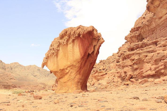 Tours in the Sinai Desert