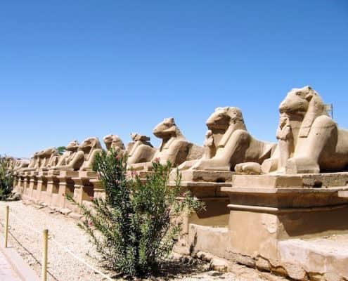 12 Day Egypt Tours - Egyptian Sphinxes, Thebes