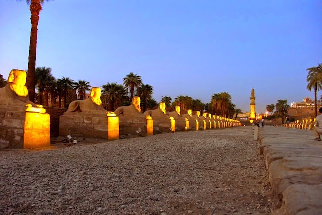 14 Day Egypt Tours - Sphinx Alley near the Luxor Temple, Egypt