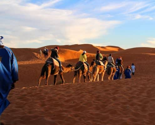 Morocco Christmas Tours