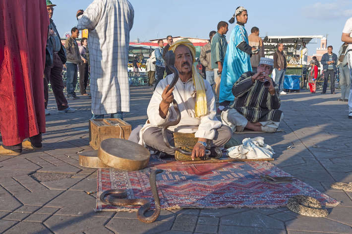 Snake charmer at the Jemaa el-Fnaa square in Marrakesh