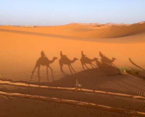 Christmas Holidays in Morocco