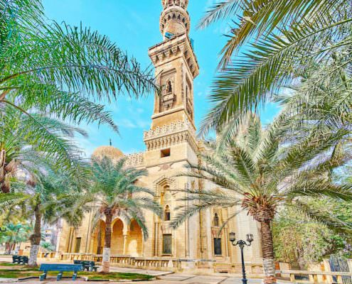 Shady palm garden, located next to Abu al-Abbas al-Mursi Mosque, Alexandria, Egypt