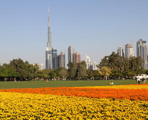 Dubai view from Safa Park