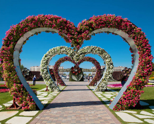 Heart shaped flower beds at the Alley of Hearts. Dubai Miracle Garden is famous for its extraordinary flower installations