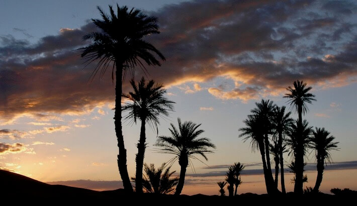 8 Day Morocco Tour