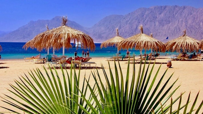 Red Sea beach with palm and umbrellas