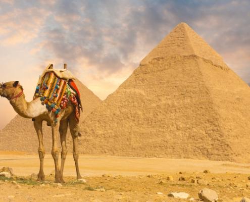 Circuito Egipto y Mar Rojo