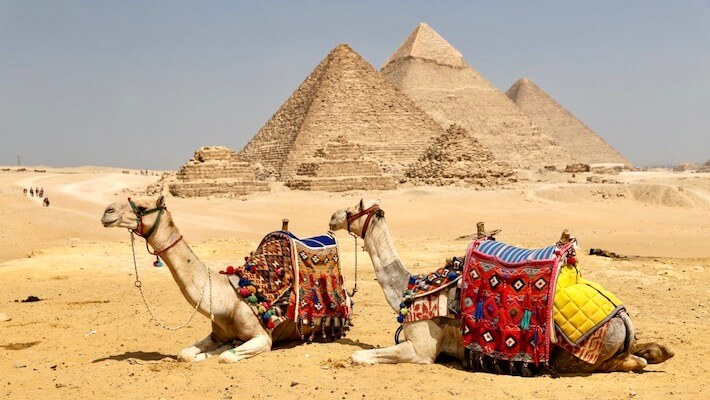 Giza Pyramids Half Day Tour