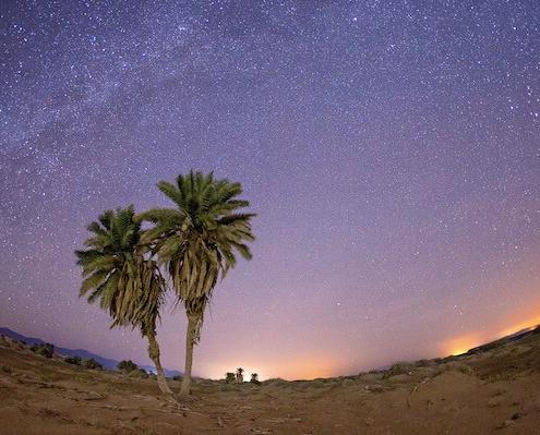 Sharm El Sheikh Safari