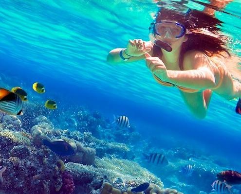 Mahmya Island Snorkeling